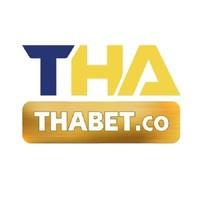 thabetco photo
